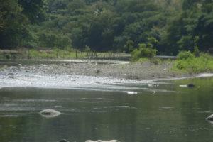 rio chiquito2